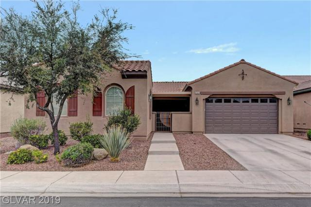 4141 Cackling Goose, North Las Vegas, NV 89084 (MLS #2097919) :: Signature Real Estate Group