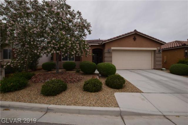 10827 Morning Frost, Las Vegas, NV 89179 (MLS #2097942) :: Signature Real Estate Group
