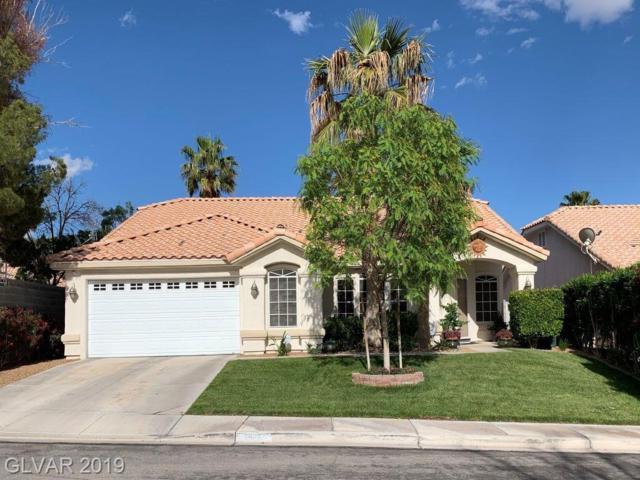 3622 Chicopee, Las Vegas, NV 89147 (MLS #2097986) :: Signature Real Estate Group