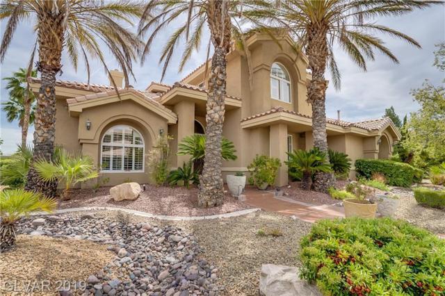 2104 Grand Island, Las Vegas, NV 89117 (MLS #2098024) :: Trish Nash Team