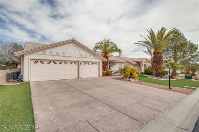 5116 Thousand Palms Lane, Las Vegas, NV 89130 (MLS #2098483) :: Trish Nash Team