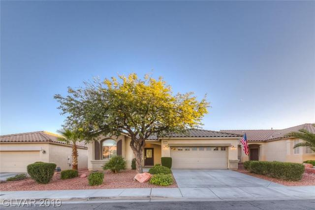 10231 Songsparrow, Las Vegas, NV 89135 (MLS #2098497) :: Signature Real Estate Group