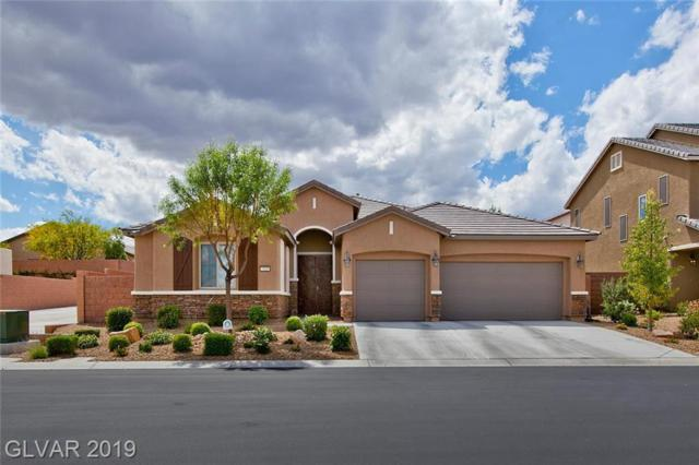 7325 Merimack Oaks, Las Vegas, NV 89166 (MLS #2098709) :: Vestuto Realty Group