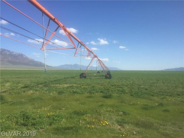 240 Acres in North Steptoe Valley, Mcgill, NV 89318 (MLS #2098798) :: The Snyder Group at Keller Williams Marketplace One