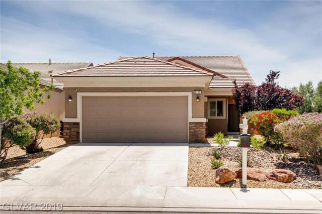 2117 Crake, North Las Vegas, NV 89084 (MLS #2098814) :: ERA Brokers Consolidated / Sherman Group