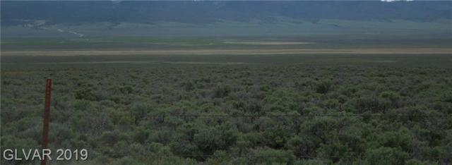 314 Acres in Steptoe Valley, Mcgill, NV 89318 (MLS #2098880) :: The Snyder Group at Keller Williams Marketplace One