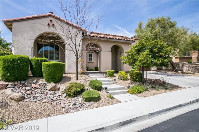 12245 Bluebird Canyon, Las Vegas, NV 89138 (MLS #2098966) :: Trish Nash Team