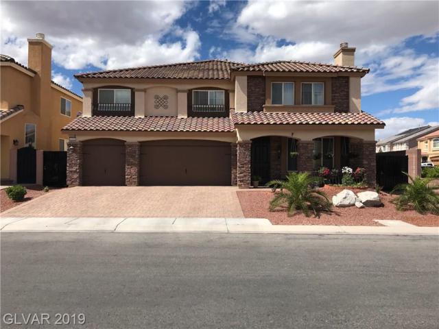 6206 Mount Palomar, Las Vegas, NV 89139 (MLS #2099543) :: Trish Nash Team