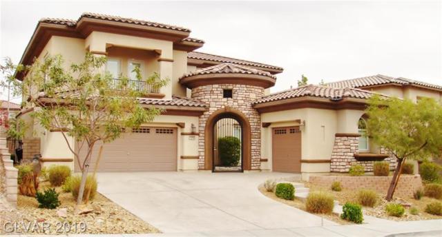 12256 Montura Rosa, Las Vegas, NV 89138 (MLS #2099556) :: Trish Nash Team