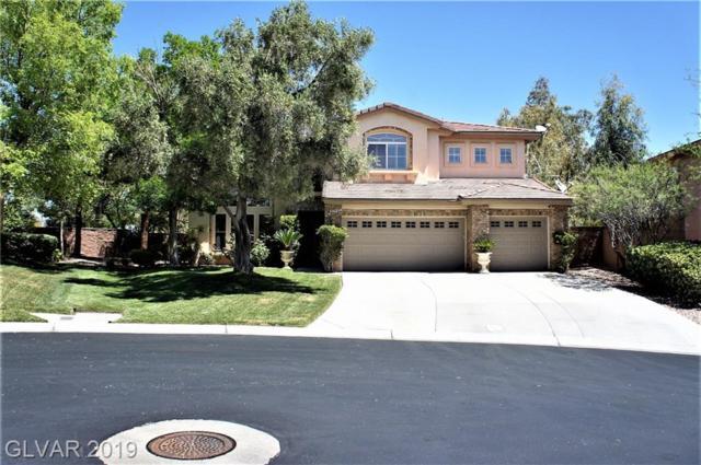 10224 Hawk Bay, Las Vegas, NV 89144 (MLS #2100113) :: Trish Nash Team