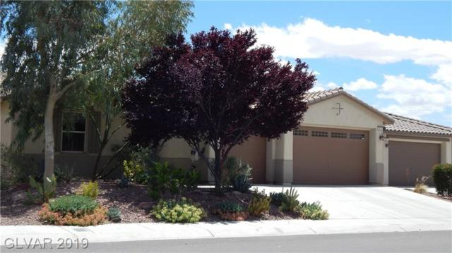 5875 E Al Fresco, Pahrump, NV 89061 (MLS #2100293) :: ERA Brokers Consolidated / Sherman Group