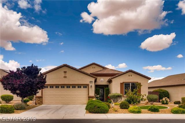 2517 Solera Sky, Henderson, NV 89044 (MLS #2100492) :: Trish Nash Team