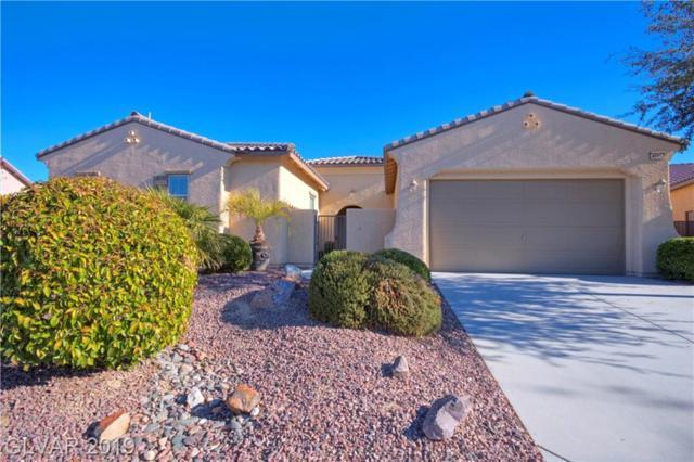 4895 S Bientian, Pahrump, NV 89061 (MLS #2103420) :: Signature Real Estate Group