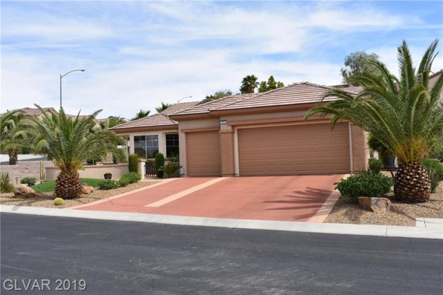 3003 N Hickory Valley, Henderson, NV 89052 (MLS #2105155) :: Signature Real Estate Group