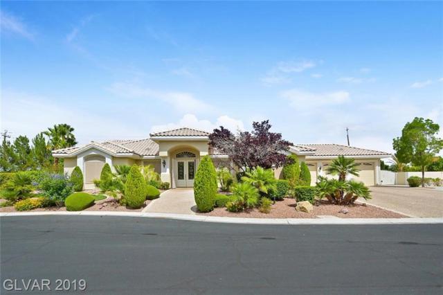 4208 Topsider, Las Vegas, NV 89129 (MLS #2105469) :: Trish Nash Team