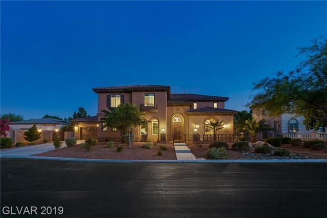 6805 Via Locanda, Las Vegas, NV 89131 (MLS #2106044) :: Signature Real Estate Group