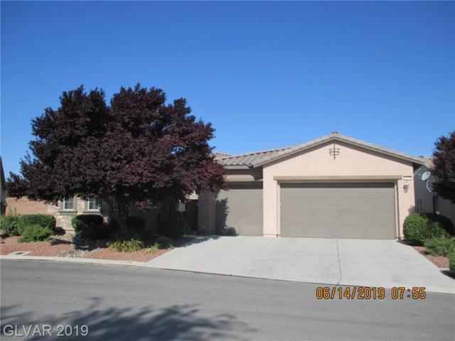 4890 S Bello, Pahrump, NV 89061 (MLS #2106149) :: Signature Real Estate Group