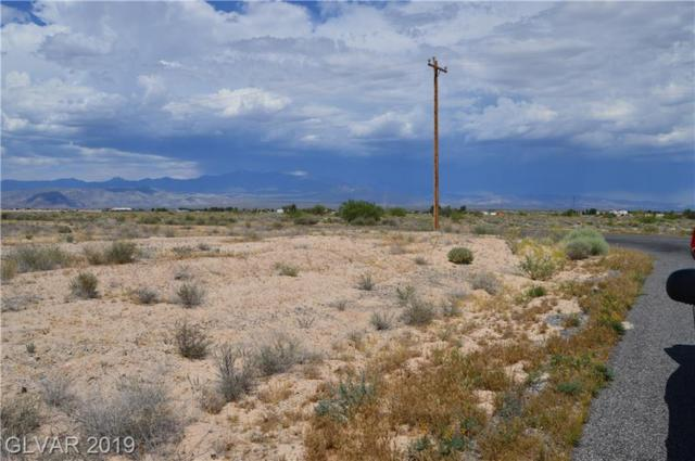 10220 S Oakridge Avenue, Pahrump, NV 89048 (MLS #2106527) :: The Mark Wiley Group | Keller Williams Realty SW