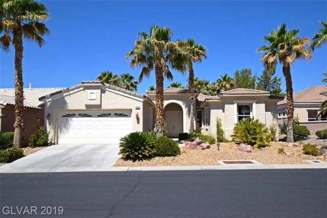 4555 Denaro, Las Vegas, NV 89135 (MLS #2106728) :: Signature Real Estate Group