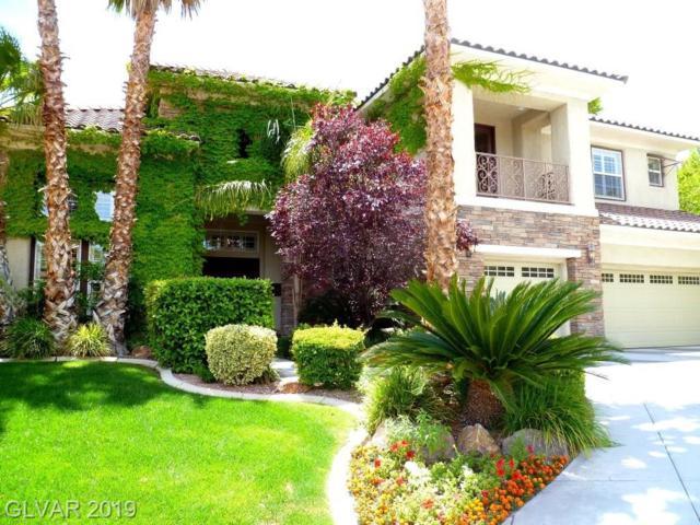 10847 Chartwell, Las Vegas, NV 89135 (MLS #2106979) :: Signature Real Estate Group