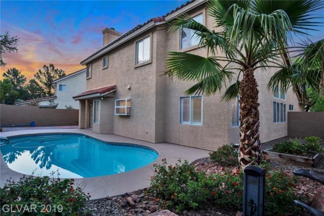 8829 Cypresswood, Las Vegas, NV 89134 (MLS #2108089) :: Trish Nash Team