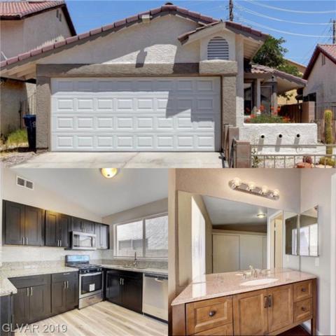3920 Tatiana, Las Vegas, NV 89115 (MLS #2108856) :: Signature Real Estate Group