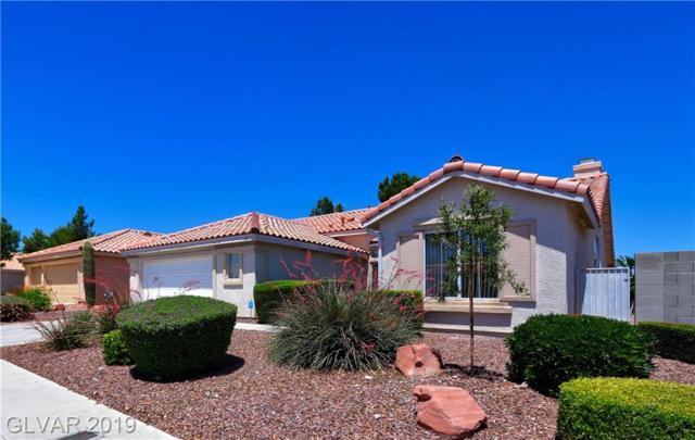 6204 Shadow Oak, North Las Vegas, NV 89031 (MLS #2108994) :: Signature Real Estate Group
