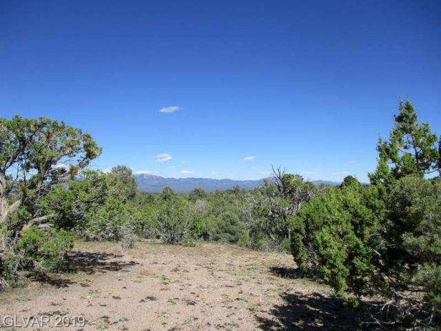 Malloy Springs Rd, Pioche, NV 89043 (MLS #2109076) :: Trish Nash Team
