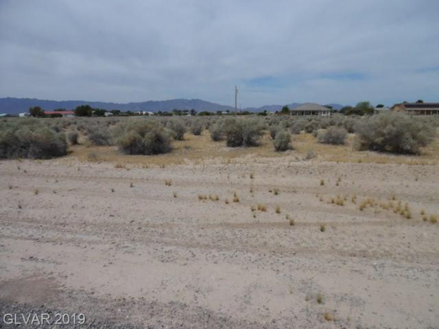 3800 S Lookout, Pahrump, NV 89048 (MLS #2109616) :: Trish Nash Team