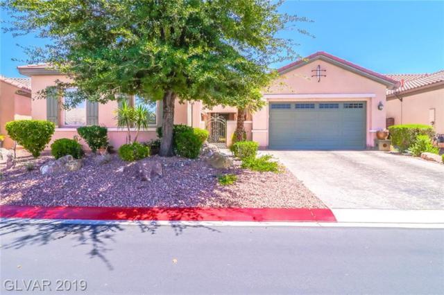 6920 Auklet, North Las Vegas, NV 89084 (MLS #2113016) :: Vestuto Realty Group