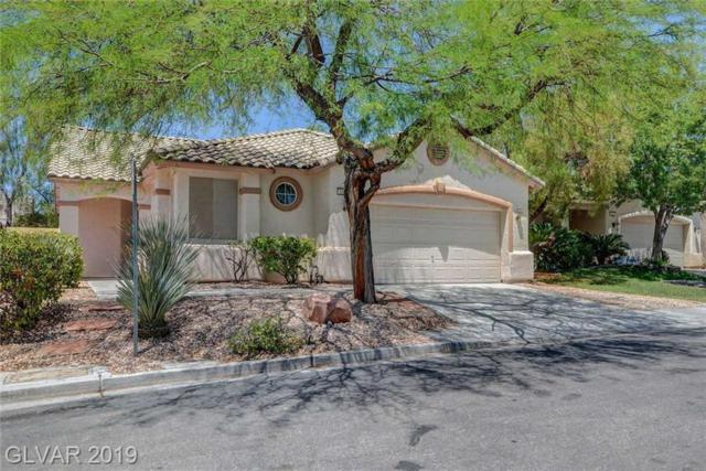 3205 Townsend Hall, Las Vegas, NV 89135 (MLS #2113389) :: Vestuto Realty Group