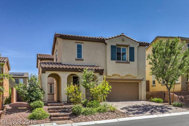 10619 Mentesana, Las Vegas, NV 89166 (MLS #2113903) :: Vestuto Realty Group