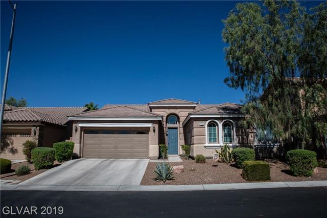 7741 Tortoise Shell, Las Vegas, NV 89149 (MLS #2115427) :: Vestuto Realty Group