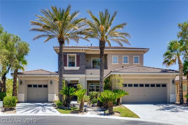 1116 Sparkling Amber, Las Vegas, NV 89144 (MLS #2115494) :: Trish Nash Team