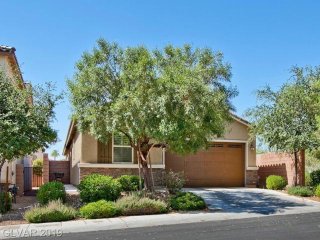10137 Lady Apple, Las Vegas, NV 89148 (MLS #2115534) :: Signature Real Estate Group