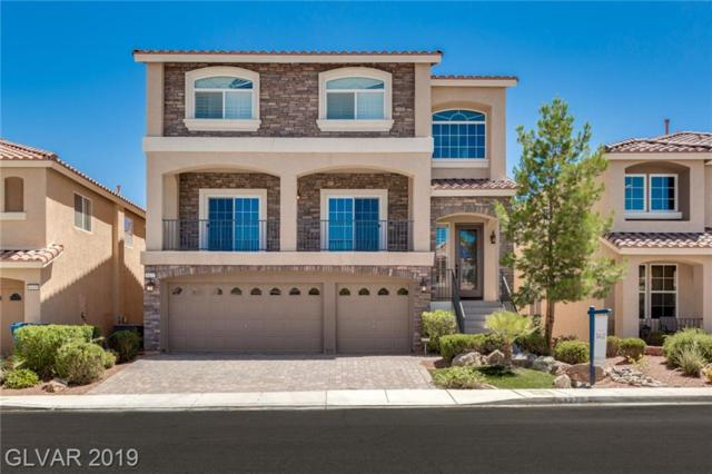 6427 Parrot Ridge, Las Vegas, NV 89139 (MLS #2116254) :: ERA Brokers Consolidated / Sherman Group