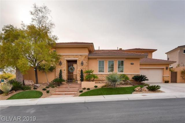 2453 Calico Creek, Las Vegas, NV 89135 (MLS #2117659) :: Signature Real Estate Group