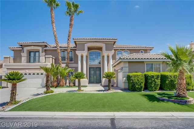 1614 Waterford Falls, Las Vegas, NV 89123 (MLS #2118155) :: Signature Real Estate Group