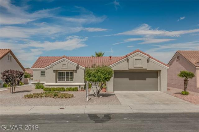 2440 Desert Glen, Las Vegas, NV 89134 (MLS #2118500) :: Signature Real Estate Group