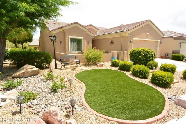 3441 Lapwing, North Las Vegas, NV 89084 (MLS #2118971) :: ERA Brokers Consolidated / Sherman Group