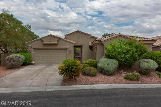 11063 Gammila, Las Vegas, NV 89141 (MLS #2119153) :: Vestuto Realty Group