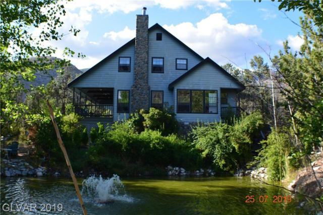 1394 Trout Canyon, Other, NV 89048 (MLS #2120824) :: Trish Nash Team