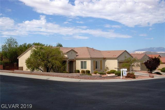 2921 Hayden Creek, Henderson, NV 89052 (MLS #2120867) :: Signature Real Estate Group