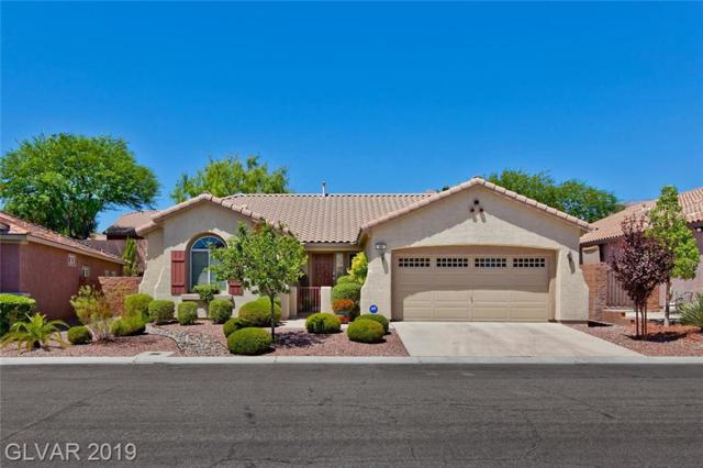 69 Escondido Canyon, Las Vegas, NV 89138 (MLS #2123748) :: Trish Nash Team