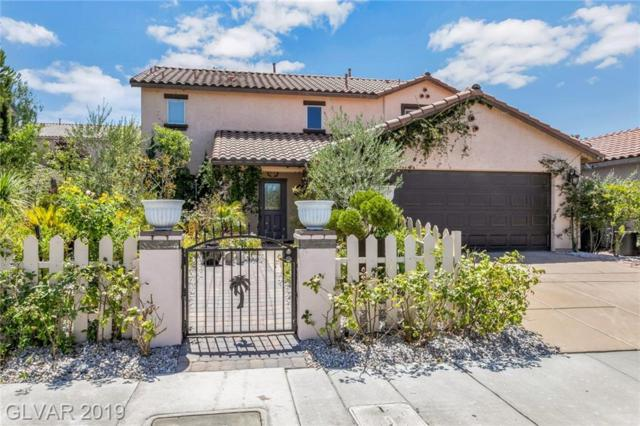 337 Arroyo Grande, Henderson, NV 89012 (MLS #2125050) :: Signature Real Estate Group