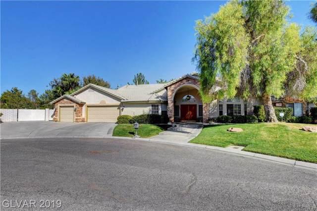 1620 Charles Lam Court, Las Vegas, NV 89117 (MLS #2141425) :: Hebert Group   Realty One Group
