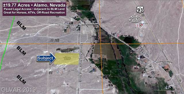 19.77 Acres €¢ Alamo West Road, Alamo, NV 89001 (MLS #2141567) :: Trish Nash Team