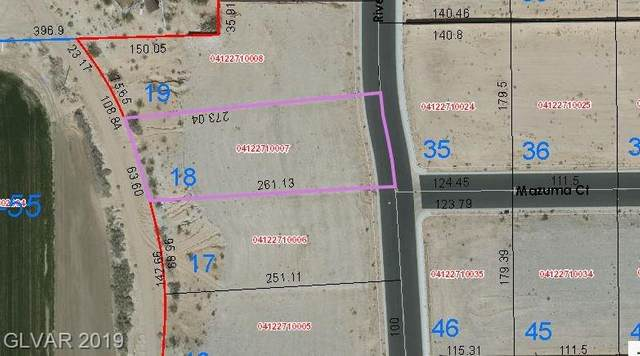 3997 River Heights Lane, Logandale, NV 89021 (MLS #2148708) :: Jeffrey Sabel