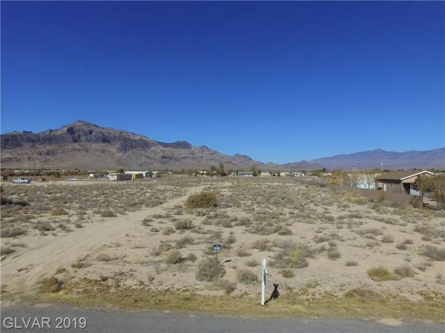 2880 W Mcmurray Drive, Pahrump, NV 89061 (MLS #2149025) :: The Lindstrom Group