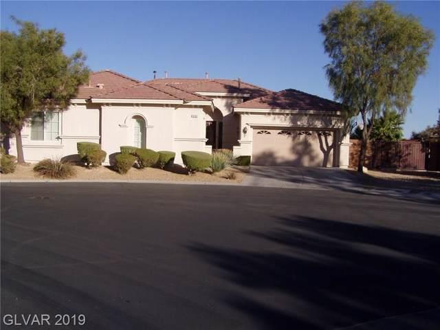 10360 Hawks Wing, Las Vegas, NV 89178 (MLS #2149254) :: Signature Real Estate Group